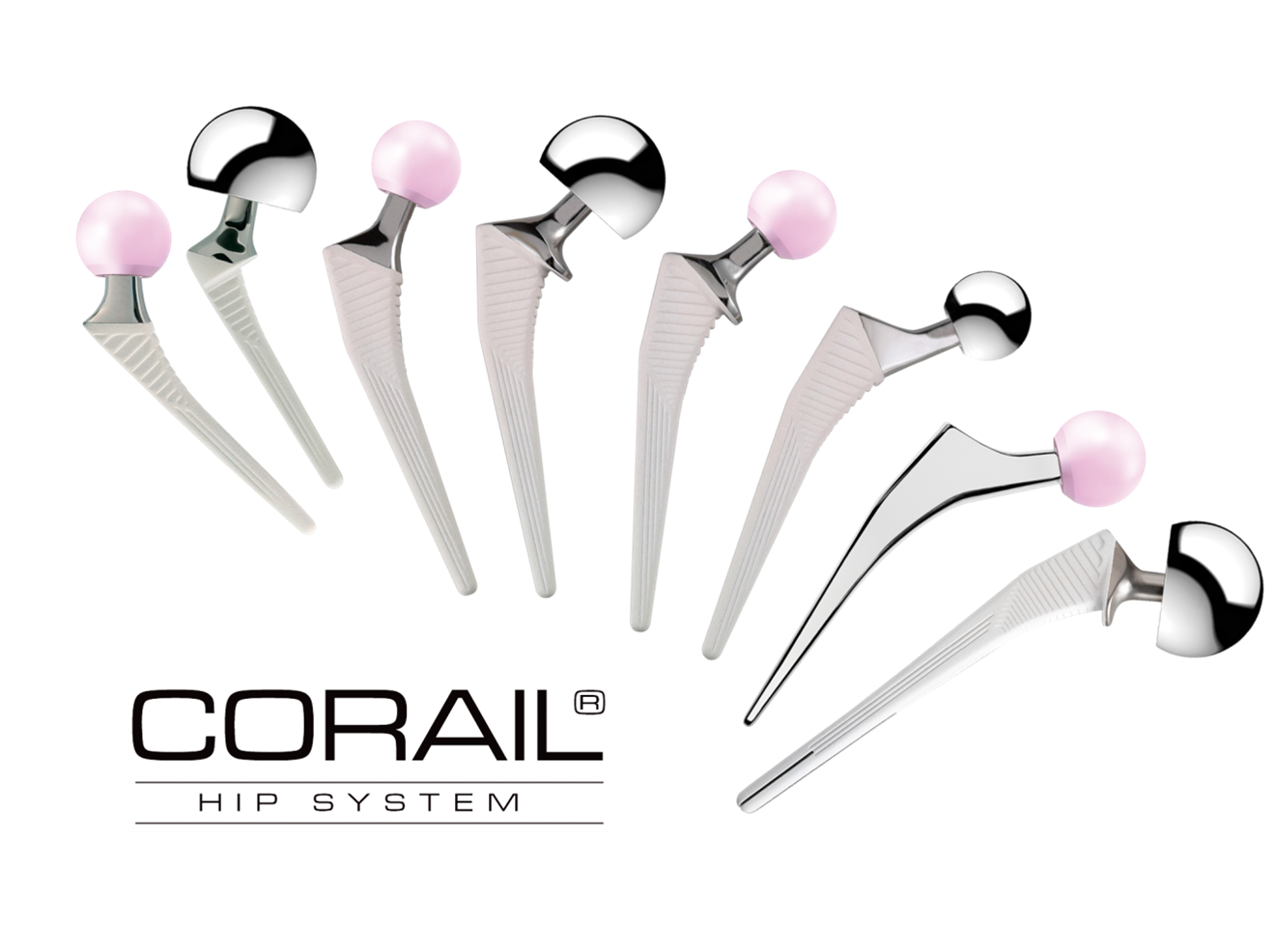 Corail Hip System